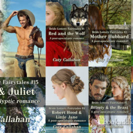 Bride Lottery Fairytales 15 Rome and Juliet review | Book Addicts