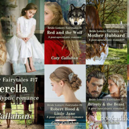 Bride Lottery Fairytales 17 Cinderella by Caty Callahan novel review | Book Addicts