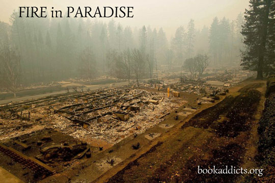 Fire in Paradise (film)