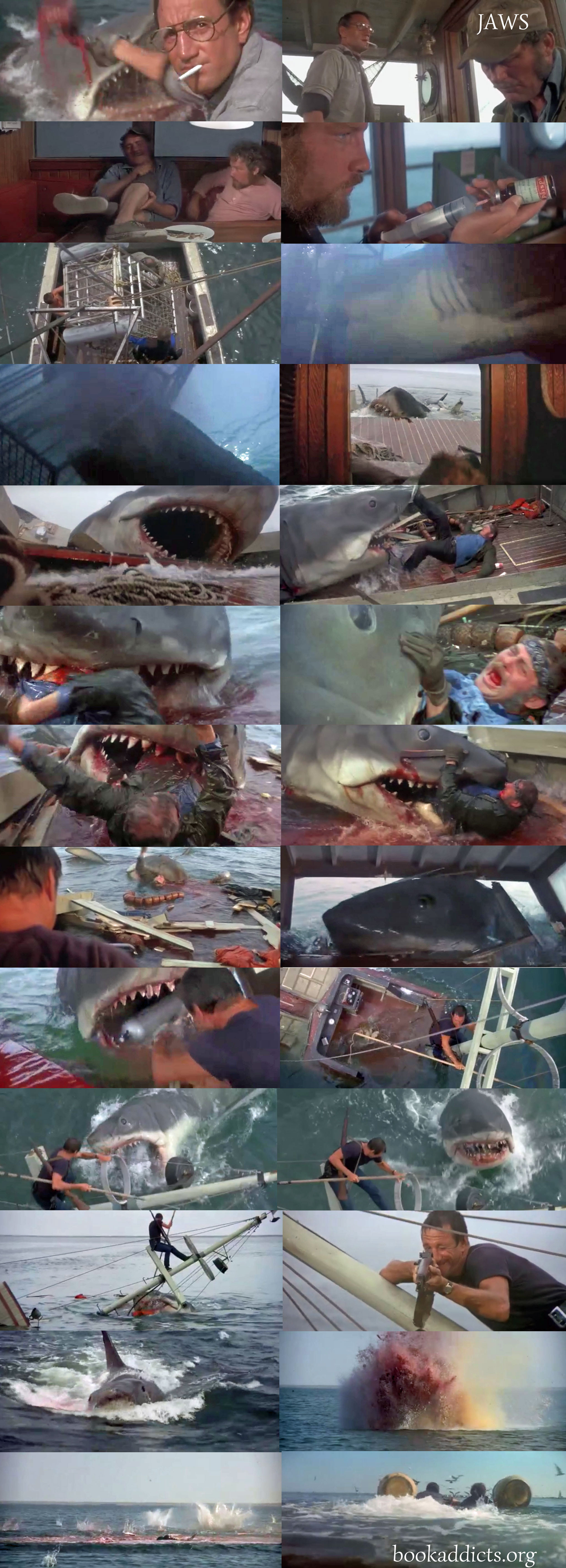 Jaws 1975 film review | Book Addicts