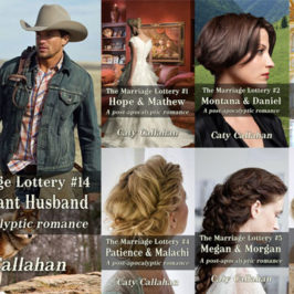Marriage Lottery 14 The Reluctant Husband by Caty Callahan review | Book Addicts