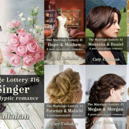 Marriage Lottery 16 The Singer by Caty Callahan review | Book Addicts