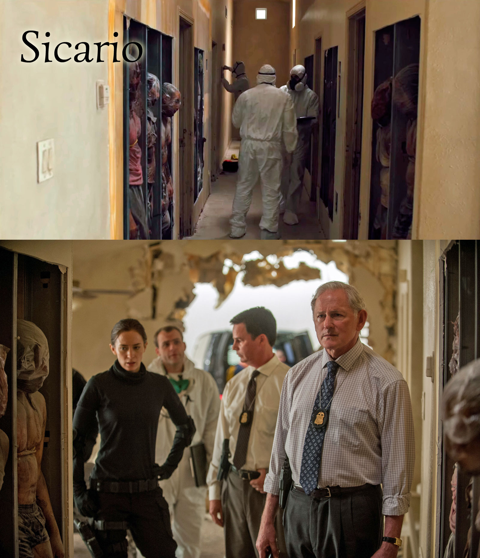 Sicario 2015 - Bodies in Walls | Book Addicts