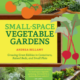 Small Space Gardening by Andrea Bellamy book review | Book Addicts