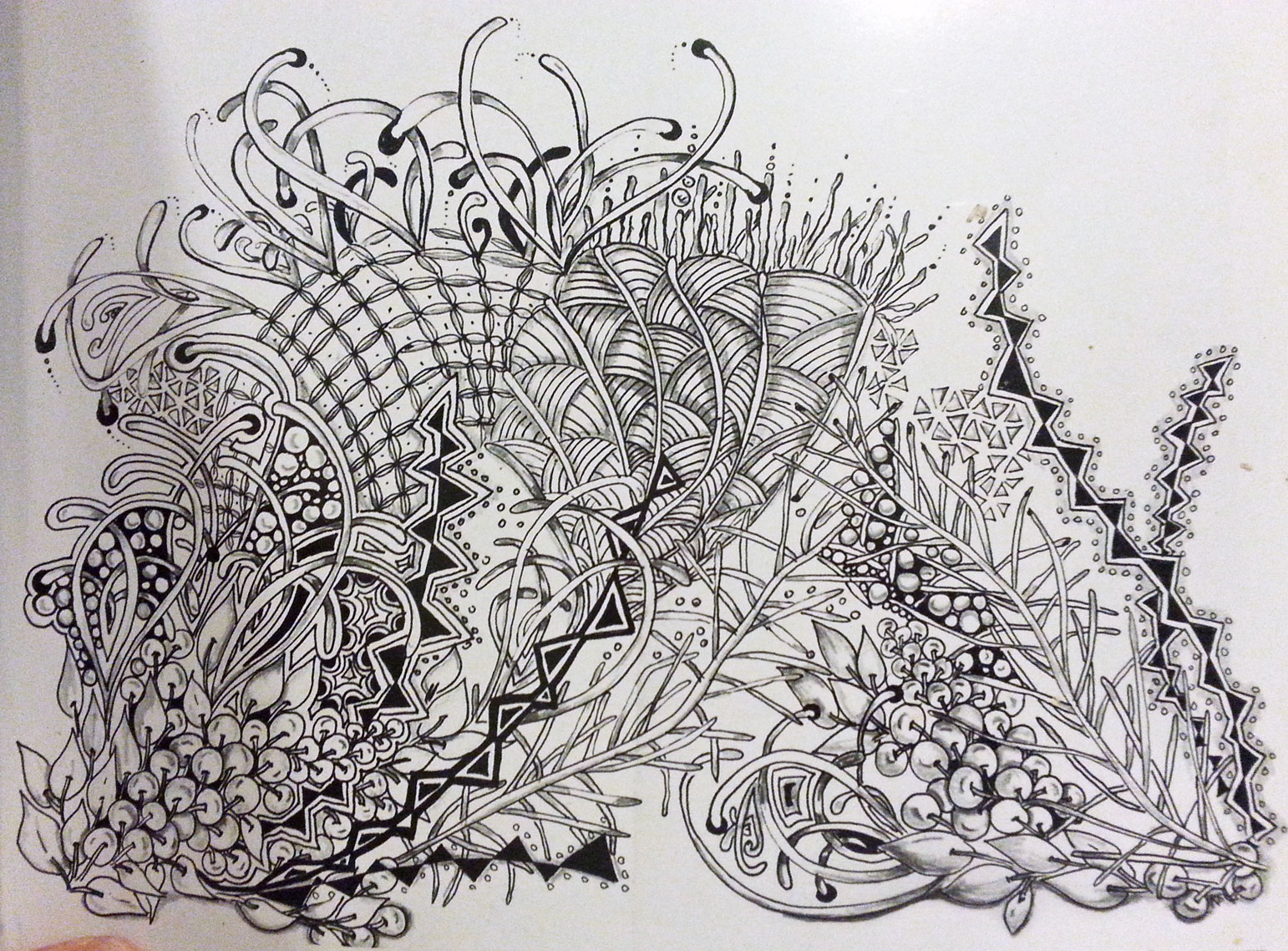 The Beauty of Zentangle book review | Book Addicts
