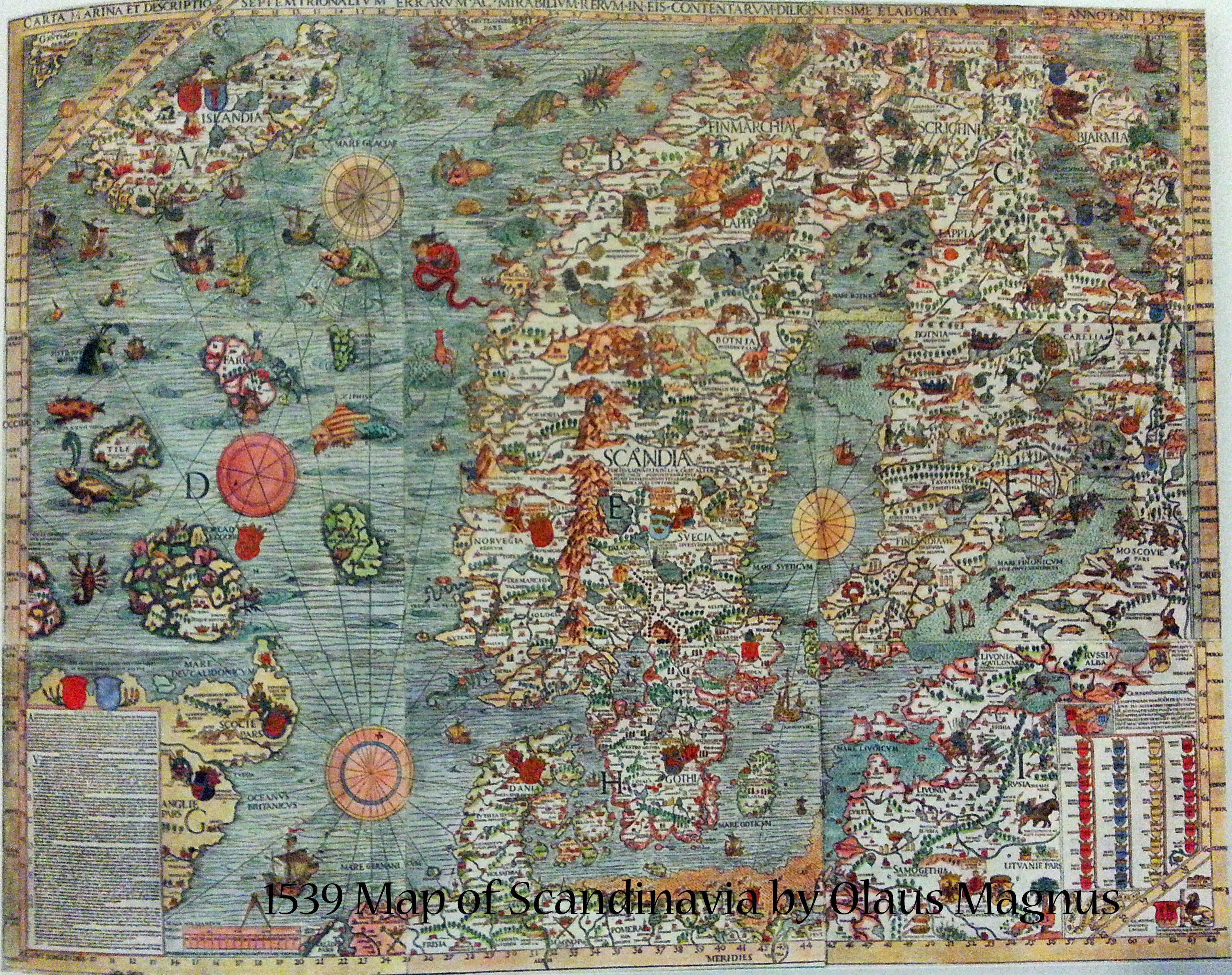 1539 Map of Scandinavia by Olaus Magnus | Book Addicts